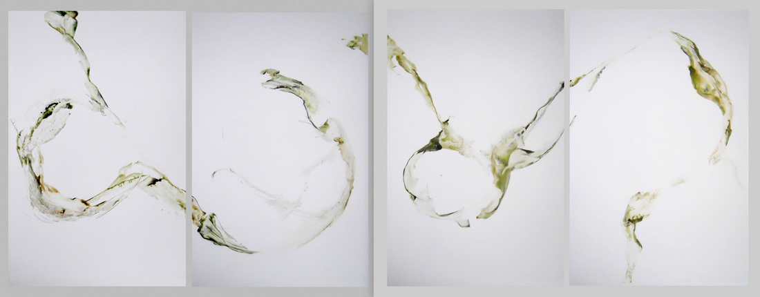 Acrylic on synthetic paper, four sheets each 38x25 inches, 2011